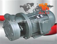 1W系列直连式单级旋涡泵