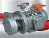 1W系列直连式单级旋涡泵厂家