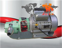 永嘉县海坦泵业有限制造 价格WCB型微型齿轮油泵