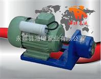 油泵材质 永嘉县海坦牌生产 S型微型齿轮输油泵
