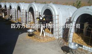 犊牛栏(岛)
