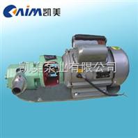 WCB微型齿轮油泵
