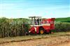 CB03    玉米机