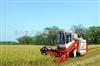 RB20(4LZ-2A)     全喂入水稻机